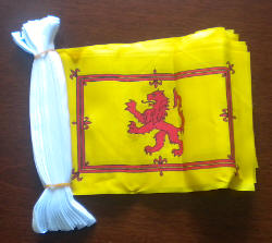 Scotland (Lion) Flag 9 metre Bunting.