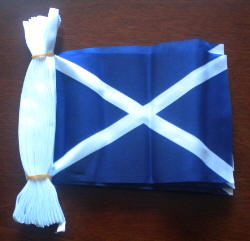 Scotland (St Andrew) Flag 9 metre Bunting.